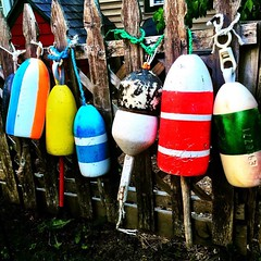 #Maine #mainelife #buoys :purple_heart: