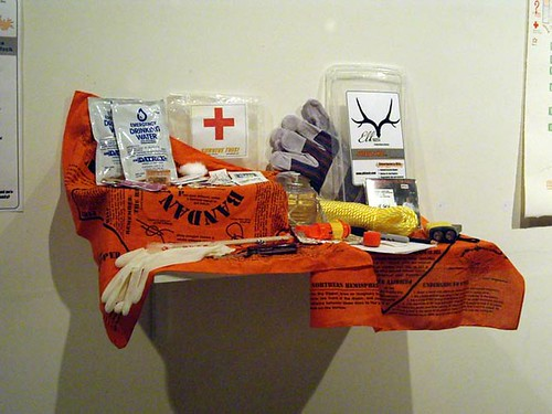 "Sarah Filley ""Emergency Preparedness Art"""