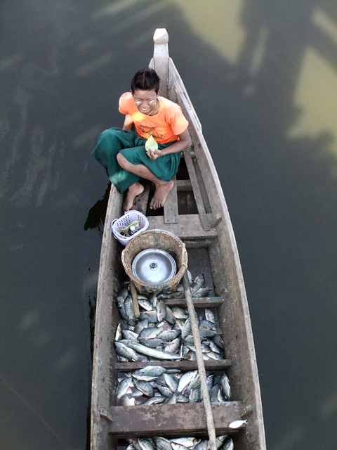 Fisherman Under the U Bien Bridge in Mandalay in Myanmar