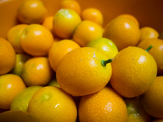 Kumquats!