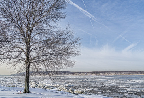 park winter cold ice nature landscape frozen sony scenic freezing hudsonriver irvington hudsonrivervalley