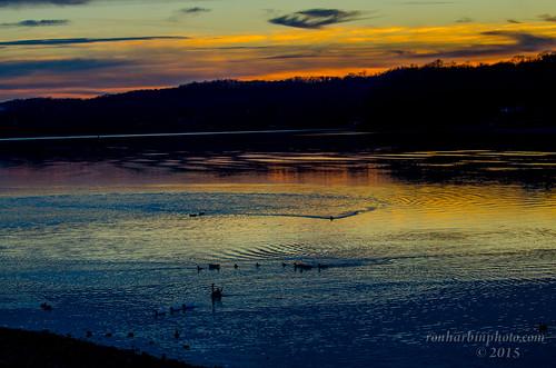 Waterfowl enjoying the last Embers of Light