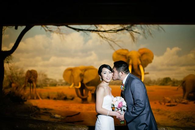 Jenny & Brian Wedding