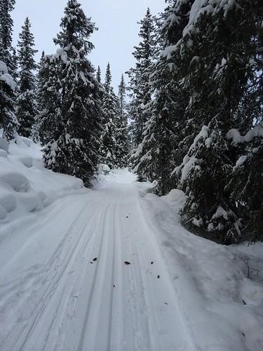 2014-12-26 Skiløyper