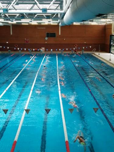 Videos de virajes en natación. Aprendiendo a hacer girar en la piscina