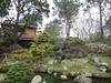 David Silver and GGP Class at Japanese Tea Garden - 1