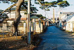 201412 北関東 Tochigi Pref.