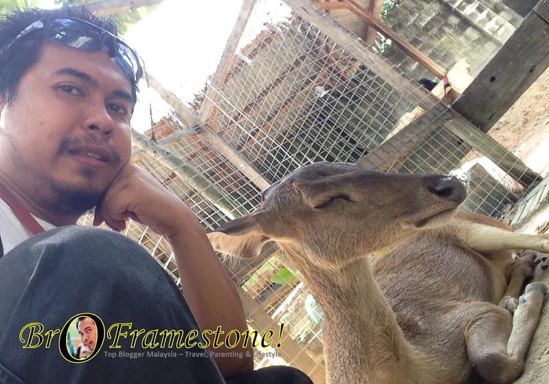 Haiwan Jinak Bergambar di Farm in The City, Seri Kembangan - Kelab Blogger Ben Ashaari