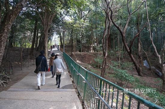 iwashimizu023