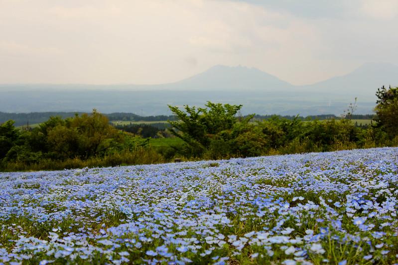 2014-05-04_01004_九州登山旅行.jpg