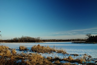Grass Lake-February Afternoon_1374