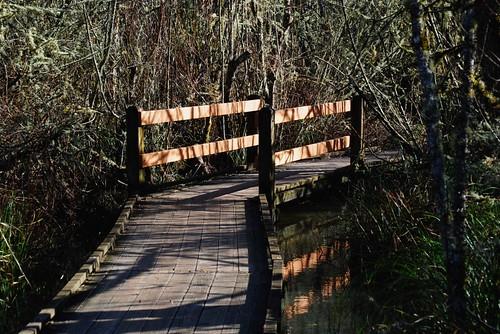 Jackson - Frazier Wetland Boardwalk