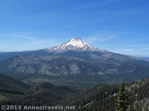 Views of Mt. Hood from the trail up Lookout Mountain, Mount Hood National Forest, Oregon