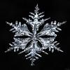 Snowflake-a-Day #88