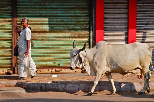 India-Gujarat-Ahmedabad