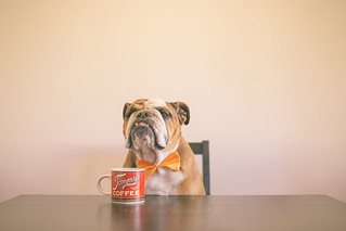 Sir, can you pour me more coffee? Please