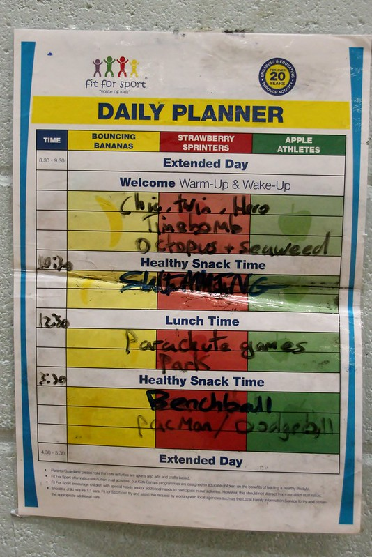fit 4 sport daily planner