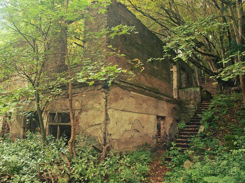 Brestovac Sanatorium (15)