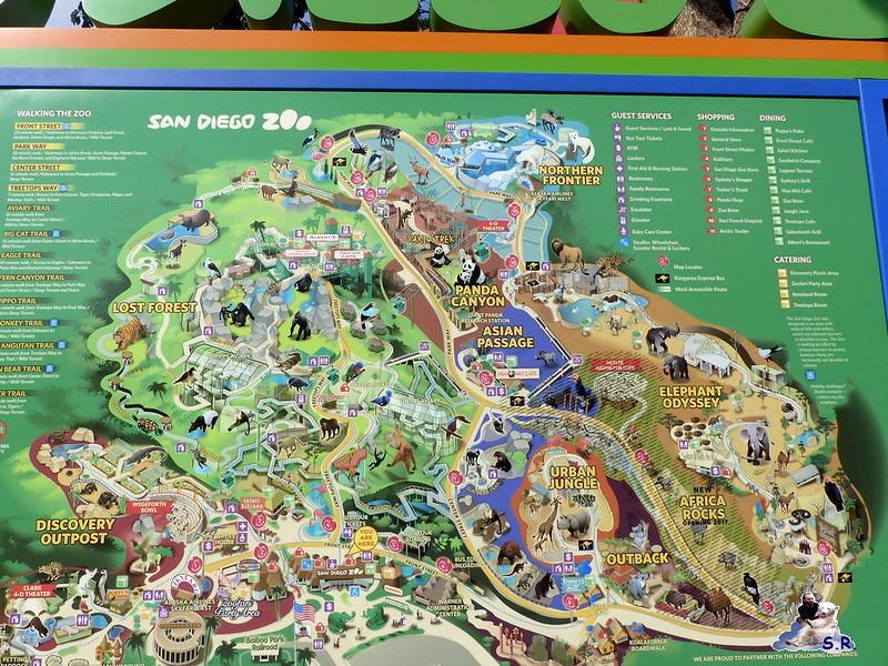 San Diego Zoo 10.11.2014 - Blog von Fruehlingsstern