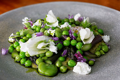 20141124-013-Slow eggs with peas, beans and creame…