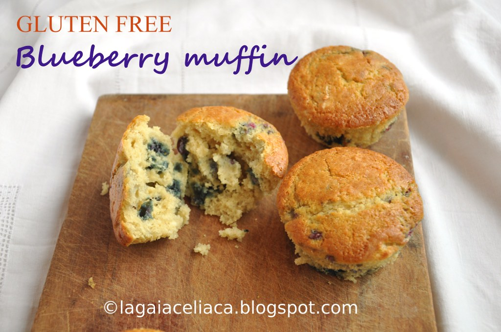 Blueberry Muffin senza glutine