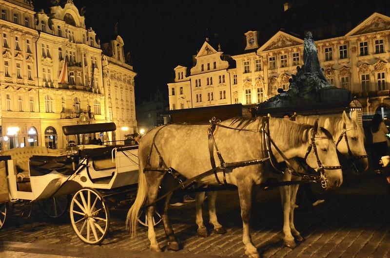 Prague_2013_ 241