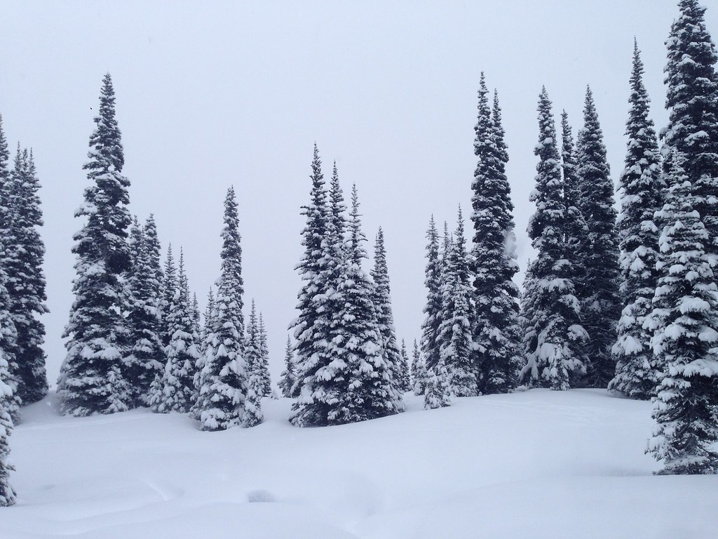 Winter in Crystal Mountain