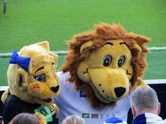 stuffed toy(0.0), toy(0.0), textile(1.0), lion(1.0), plush(1.0), mascot(1.0),