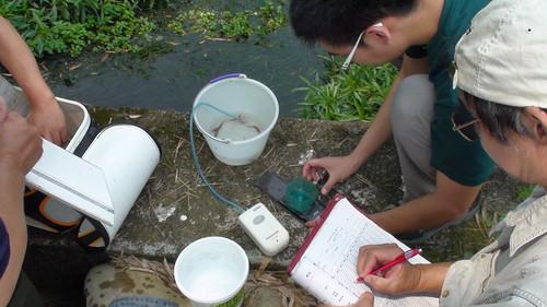 特生中心研究人員和大甲溪生態協會每月一次的相對族群調查,同時測量水質和水量的變化,2013.04.23,大甲溪生態協會提供