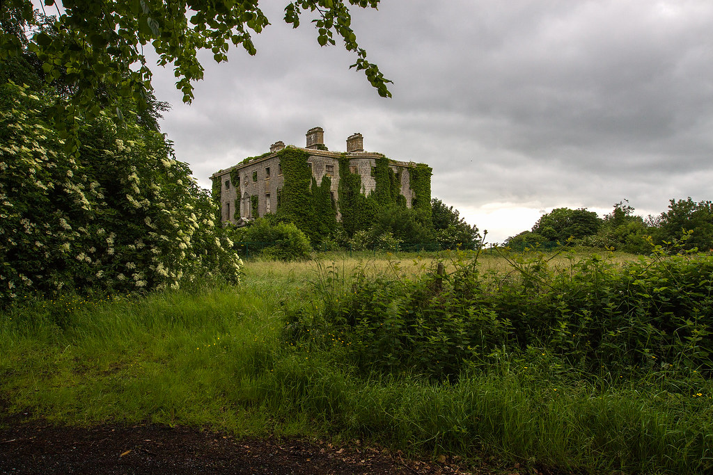 Tudenham Park House, Co. Westmeath (4)