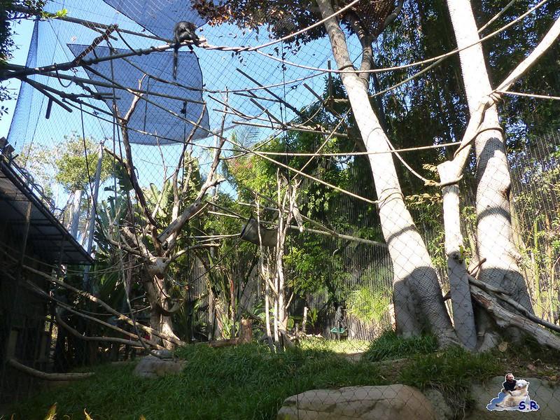 San Diego Zoo 10.11.2014 153