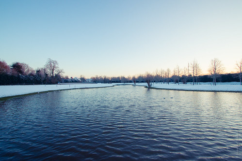 morning winter lake snow ice nature water sunrise landscape frozen duck
