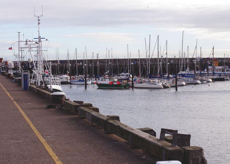 Scarborough Harbour, Bumpkin Betty