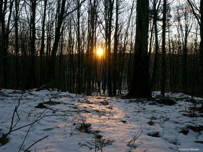 Sunrise Askhult-imp