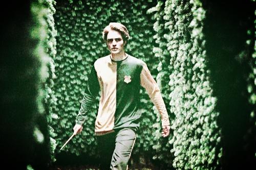 Cedric-Diggory-hufflepuff-28197531-2000-1335