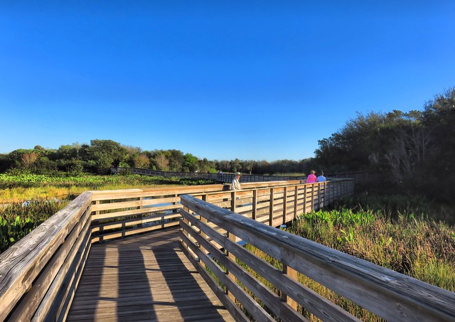 Green Cay boardwalk HDR 20150212