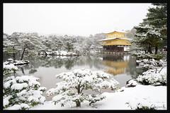 日本京都-金閣寺-雪.48