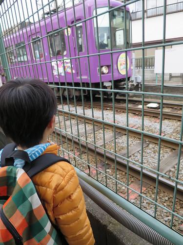 江ノ電を見るとらちゃん 2015/2