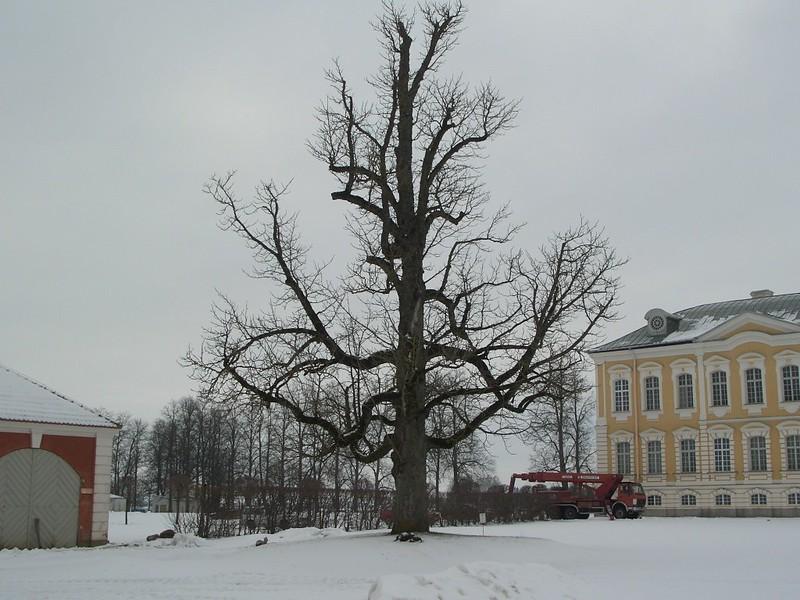 Парк Рундале II 47
