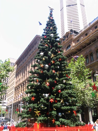 Christmas tree in sydney