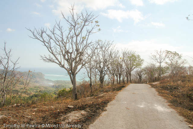 Indonesia - Sumba - Tarimbang - 04 - The beach looks like close