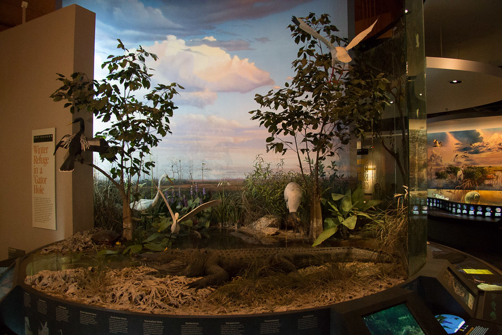 Visitor Center exhibits at Everglades National Park