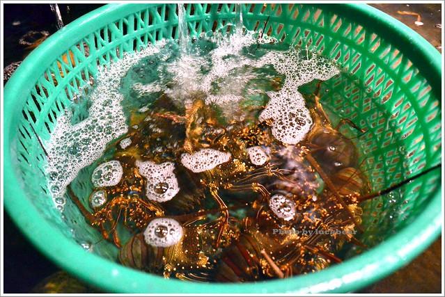 花蓮新社噶瑪蘭海產店004-DSC_8893