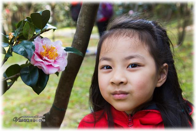 0202陽明山花卉016