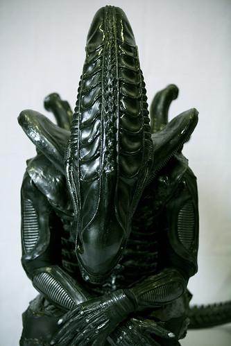 Studio shoot of Alien costume