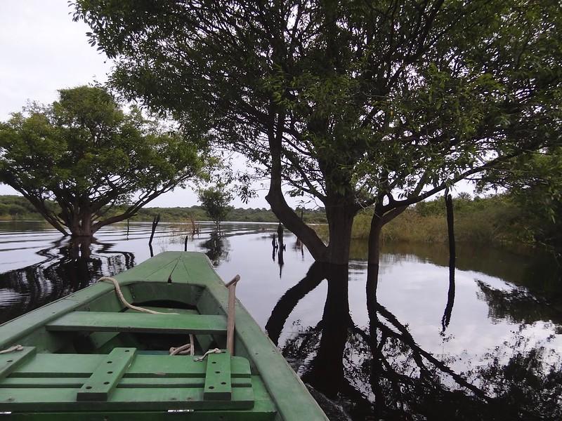 manaus-rio negro-amazon 97