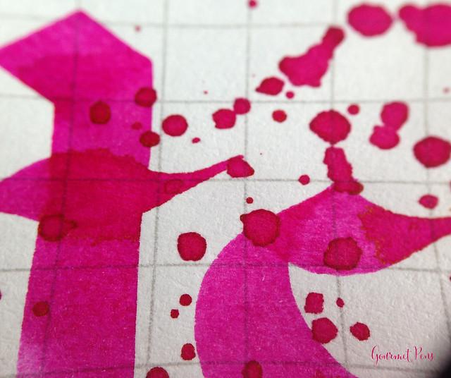 Ink Shot Review Pilot Iroshizuku Tsutsuji @PilotPenUSA (9)