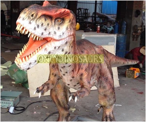 Juvenile Dinosaur Model