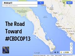 The Road Toward #CBDCOP13 @CBDNews