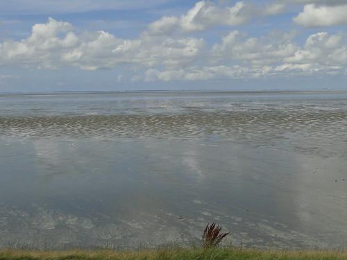Wadden Sea at Koehool